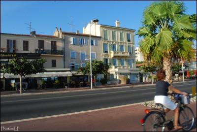 Cros de Cagnes- octobre 2009 -Prom-Photos LP Fallot- (10).jpg