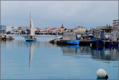 Voile latin au port du Cros-Aventure Pluriel-PhotosLP Fallot-Mai 2011 (2).jpg