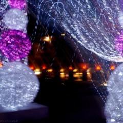 Lumières place Garibaldi à Nice-PhotosLP Fallot (2).jpg