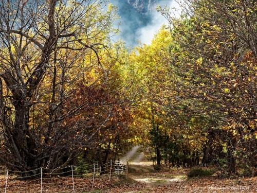 automne,annot,un blog revisité,méailles,entrevaux,le fugeret,haute-provence