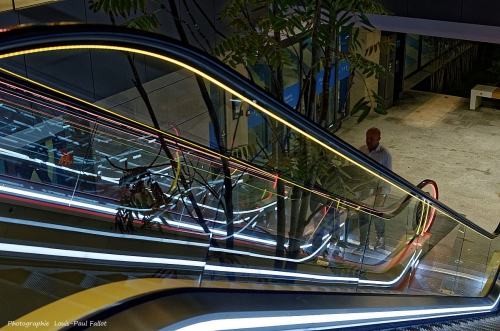 Néons escalators-Photo LP Fallot.jpg