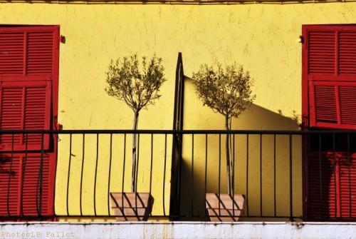 Cros de Cagnes-03112012-LP Fallot  (8).jpg