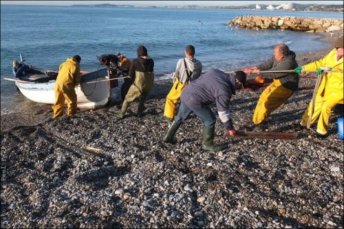 Pêche à la poutine au Cros de Cagnes-PhotosLP Fallot (8).jpg