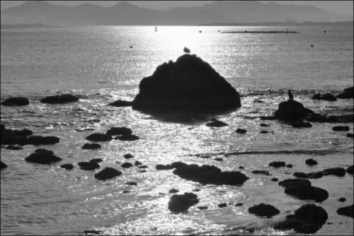 photo,plage des ondes,cap d'antibes,méditerranée