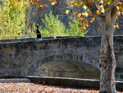 Automne en Haute Provence-PhotosLP Fallot -Série 2  (4).jpg