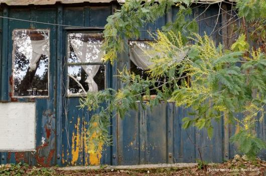 Artgriculture-PhotosLP Fallot (6).jpg