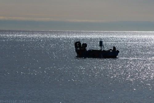 La mer changeant-PhotosLP Fallot (1).jpg