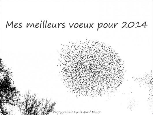 Voeux_PhotosLP.jpg