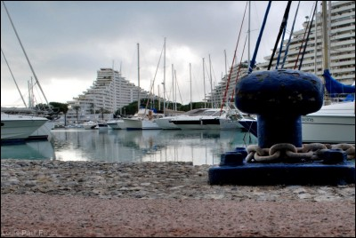 Marina Marathon 3-LP Fallot2.jpg