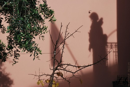 Cros de Cagnes- hors saison-PhotosLP Fallot (13).jpg