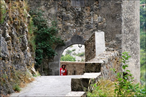 Chemin d'Entrevaux-PhotosLP Fallot (14).jpg