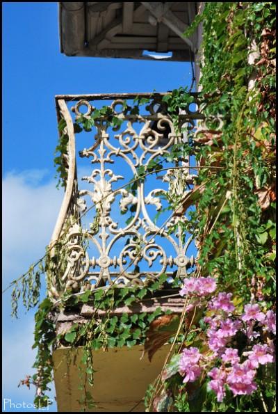 Cros de Cagnes-octobre 2009-PhotosLP Fallot (4).jpg
