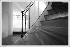 Maison des Artistes Cagnes-PhotosLP-2008.jpg