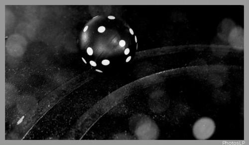 Rondeur(s) - Défifoto-PhotosLP Fallot (2).jpg