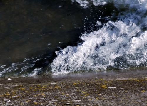 La Cagne en automne-2012-PhotosLP Fallot   (2).jpg