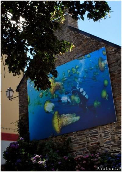 Sur les murs à La Gacilly-Festival photo 2010-PhotosLP (2).jpg
