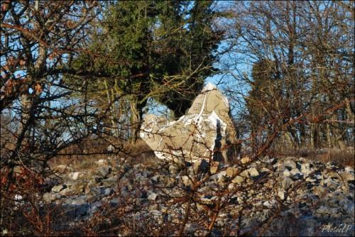 1er janvier 2011-Col de Vence-PhotosLP Fallot (3).jpg