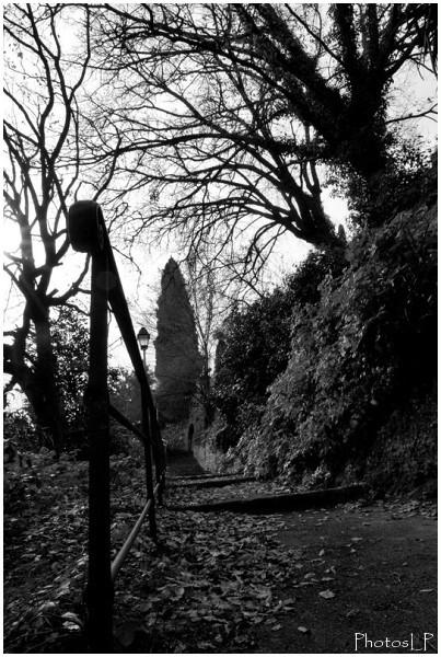 Chemin de Monsieur à Cagnes-PhotosLP Fallot.jpg