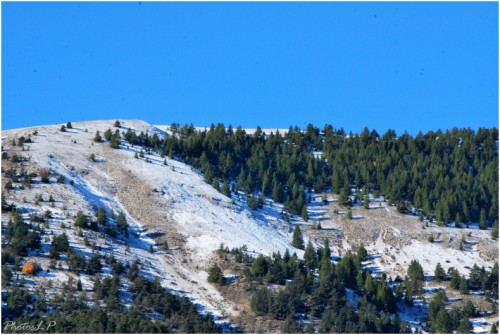 Première neige-PhotosLP-octobre 2010.jpg