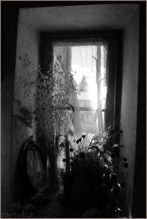 Fenêtre-PhotosLP- 2010.jpg