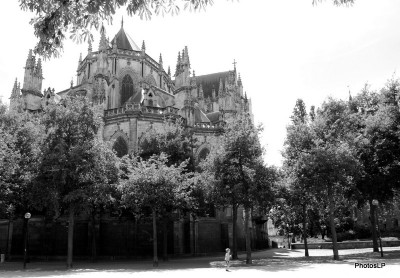 Jeu des villes-PhotosLP Fallot-2010 (2).JPG
