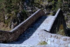 Un pont en Provence-PhotosLP Fallot-Avril 2011 (12).jpg