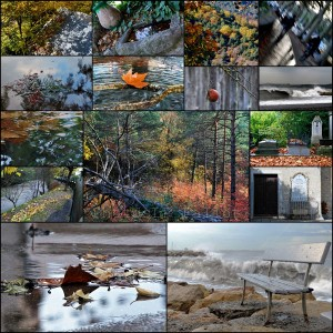 Automne 2011-PhotosLP Fallot.jpg