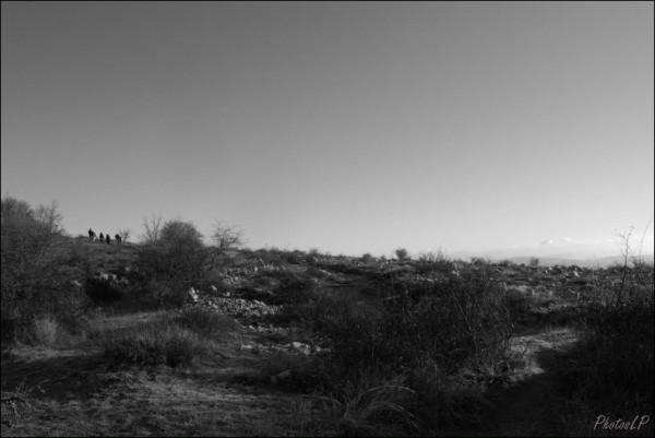 1er janvier 2011-Col de Vence-PhotosLP Fallot (4).jpg