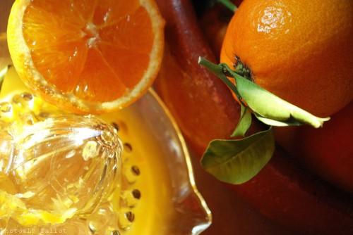 Oranges-PhotosLP Fallot (2).jpg