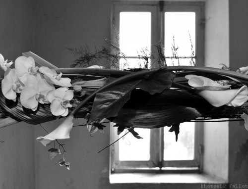 Symphonie Florale-PhotosLP Fallot (5).jpg