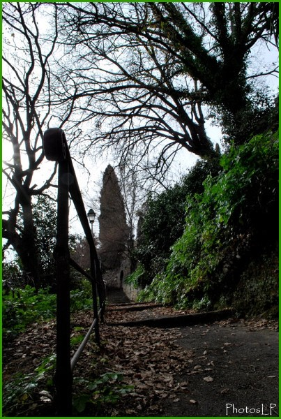Chemin de Monsieur-Haut de Cagnes-Photo LP Fallot.jpg