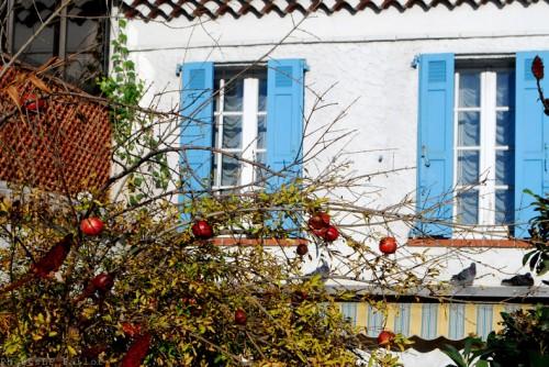 Cros de Cagnes- hors saison-PhotosLP Fallot (6).jpg